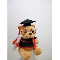 Mr Teddy